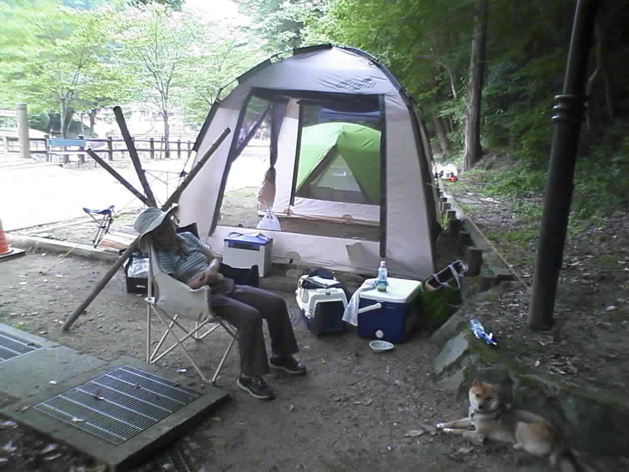 えくすとれいるでキャンプ
